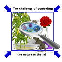 2019 - Controlled experimental environments: from cells to ecosystems