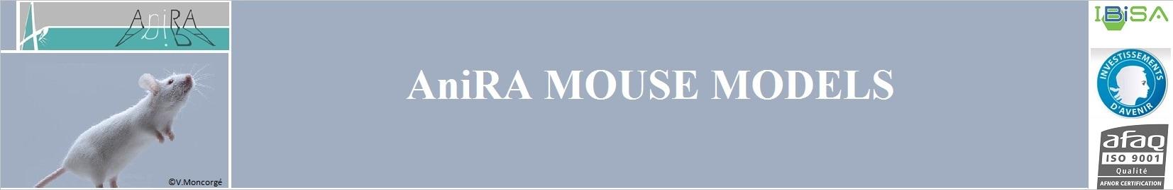 https://www.sfr-biosciences.fr/projets-labellises/Anira/mousemodels/leadImage